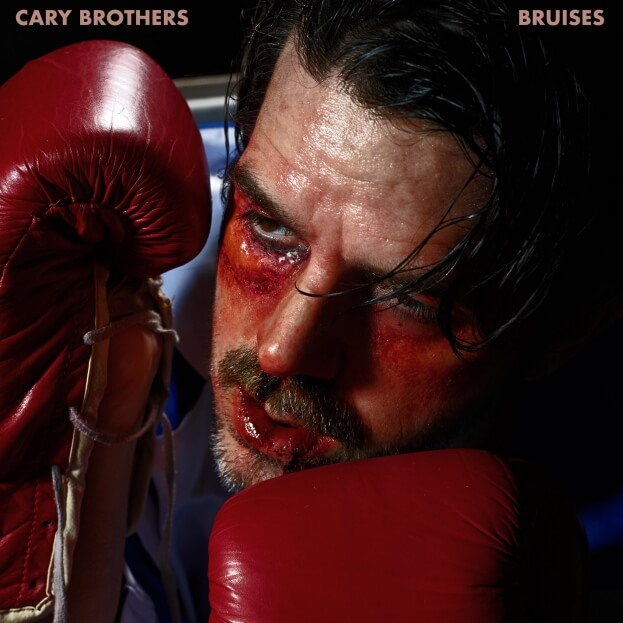 Cary Brothers Bruises Cover